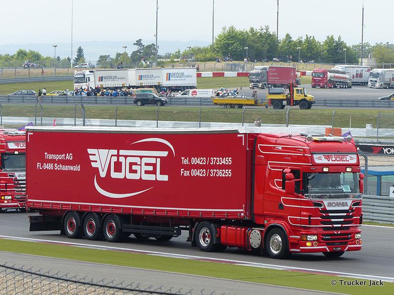20130717-Voegel-00035.jpg